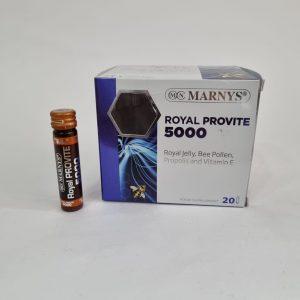 ROYAL PROVITE 5000 20 AMP